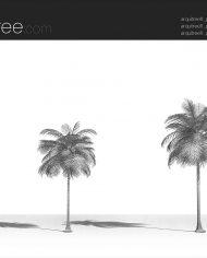 arquitree11 – Sheet – 3 – Hidden line Perspective