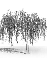 arquitree16 – 3D View – Hidden FINE