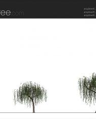 arquitree16 – Sheet – 2 – Realistic – no edges – Elevation