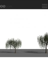 arquitree16 – Sheet – 4 – Realistic – no edges – perspective