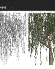 arquitree16 – Sheet – 6 – Detail Perspective