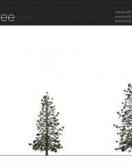 arquitree19 – Sheet – 2 – Realistic – no edges – Elevation