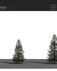 arquitree19_Detailed – Sheet – 4 – Realistic – no edges – perspective