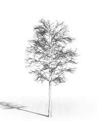 arquitree21_Detailed – 3D View – Hidden MEDIUM