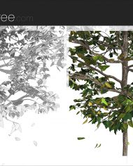 arquitree21_Detailed – Sheet – 6 – Detail Perspective