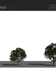 arquitree23_Detailed – Sheet – 4 – Realistic – no edges – perspective