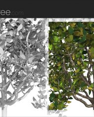 arquitree23_Detailed – Sheet – 6 – Detail Perspective