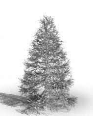 arquitree24_Detailed – 3D View – Hidden MEDIUM