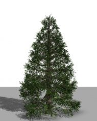 arquitree24_Detailed – 3D View – Realistic FINE