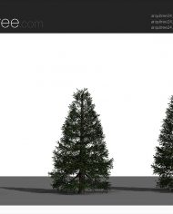 arquitree24_Detailed – Sheet – 4 – Realistic – no edges – perspective