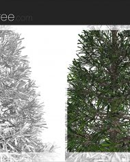 arquitree24_Detailed – Sheet – 6 – Detail Perspective
