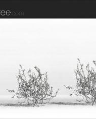 arquivy02 – Sheet – 3 – Hidden line Perspective