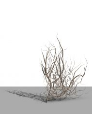 arquivy03 – 3D View – Realistic COARSE