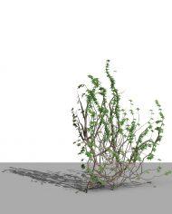 arquivy03 – 3D View – Realistic MEDIUM