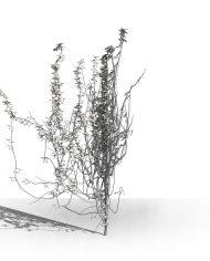 arquivy04 – 3D View – Hidden MEDIUM