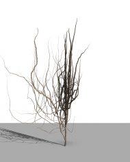 arquivy04 – 3D View – Realistic COARSE