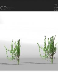 arquivy04 – Sheet – 4 – Realistic – no edges – perspective