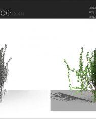 arquivy04 – Sheet – 8 – Fine detail