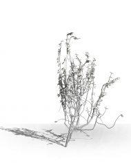 arquivy06 – 3D View – Hidden MEDIUM