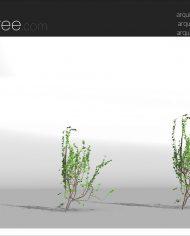arquivy06 – Sheet – 4 – Realistic – no edges – perspective