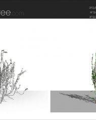 arquivy06 – Sheet – 8 – Fine detail