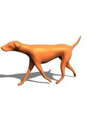 arquianimal02 – 3D View – shaded FINE